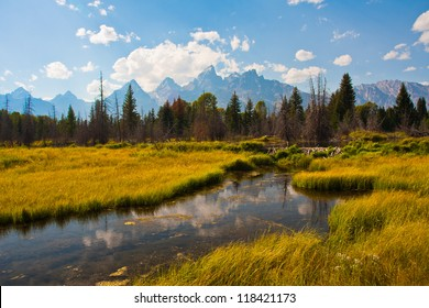 Beautiful Landscape in Grand Teton National Park