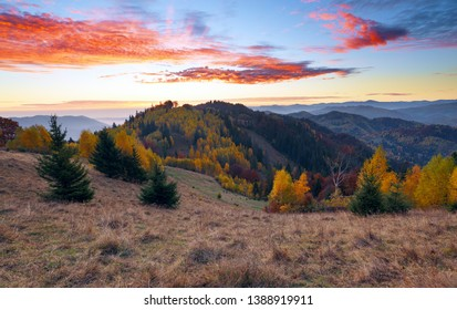 A beautiful landscape with high mountains, sky with clouds and sunset. Location place Carpathians, Ukraine, Europe. Unbelievable sunny day. There is a nice lush trees on the lawn with orange leaves.