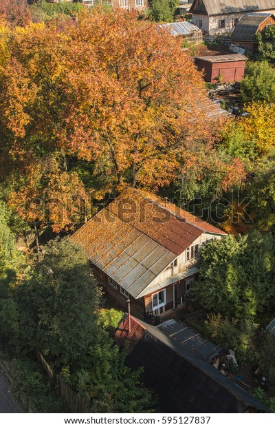 Beautiful landscape with a house and a thee with fallen leaves in autumn.