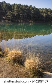 Beautiful landscape image of old clay pit quarry lake with unusual colored green water