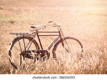 beautiful landscape image with vintage Bicycle on Summer grass field