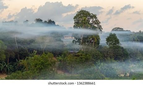 Beautiful landscape jungle view and morning fog in Bukit Kalam village,Labuan,Malaysia.Nature background.