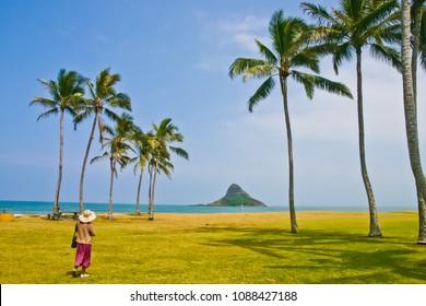 Beautiful landscape of kualoa beach park Oahu Hawaii usa