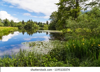 Beautiful landscape with lake in the Allgau. Bavaria. Germany.