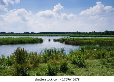 Beautiful landscape with lakes, swamps and reeds in National Park De Weerribben near Giethoorn, the Netherlands