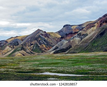 Beautiful landscape of Landmannalaugar geothermal area with river, green grass field and rhyolite mountains on the background, Fjallabak Nature Reserve, Highland of Iceland, Europe