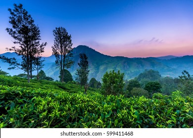 beautiful landscape in Little Adams's peak, Ella, Srilanka