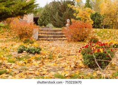 Beautiful landscape with magic autumn trees and fallen leaves on the riverside. Harmony, relaxation concept