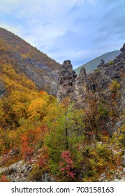 Beautiful landscape in the mountain with colorful autumn forest