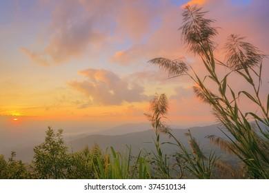 Beautiful landscape of mountain at sunset, Chiang Mai,Thailand
