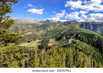 Beautiful landscape of mountains covered by forest. Panorama of the polish Tatra Mountains, view from the top of Nosal, Zakopane, Poland