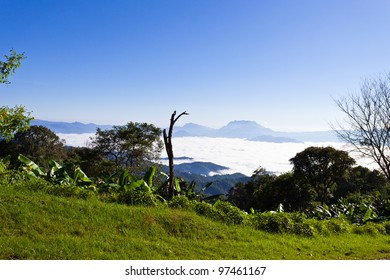 Beautiful landscape in the mountains and mist, Mae Hong Son, Thailand