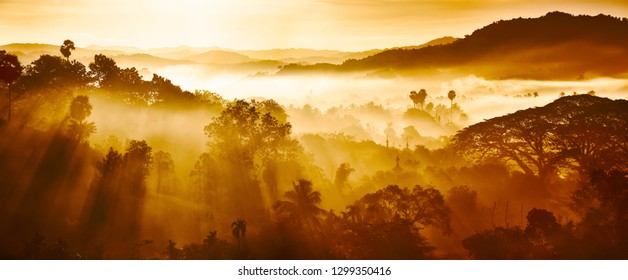 Beautiful Landscape of mountains and rainforest in early morning sun rays and fog near village Ngapali, Myanmar.