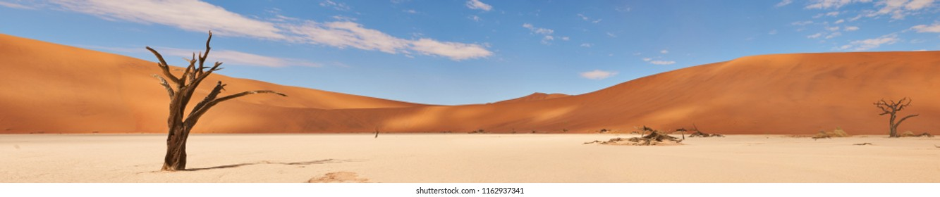 beautiful landscape in the Namib desert at Deadvlei. Overview with union of different images