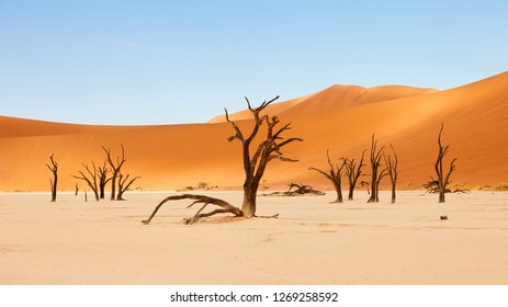 beautiful landscape in the Namib desert at Deadvlei