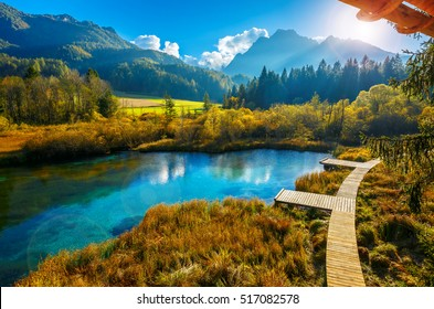 Beautiful landscape of nature at lake Zelenci in autumn, Granjska Gora, Slovenia (lens flares added)