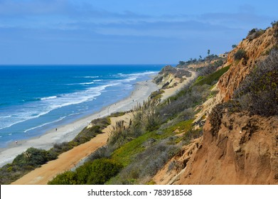 Beautiful landscape of the ocean coastline at Torrey Pines State Reserve; the many natural greens and browns of the shore contrast with the saturated blue sky and sea