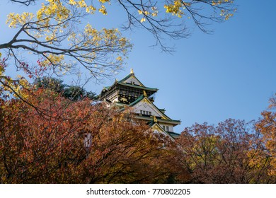 Beautiful landscape old castle with colorful leafs against clear blue sky in Osaka Japan