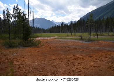 Beautiful landscape on the walk to the Paint Pots in Kootenay National Park in British Columbia in Canada