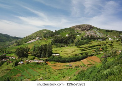 Beautiful Landscape of Ooty,Coonoor,India
