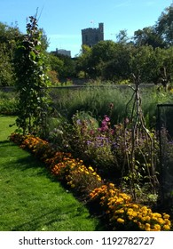 Beautiful landscape of public fruit and vegetable garden in rural outskirts of the city of London England in Putney on sunny Autumn fall day with clear blue sky over green grass lawn and flower beds
