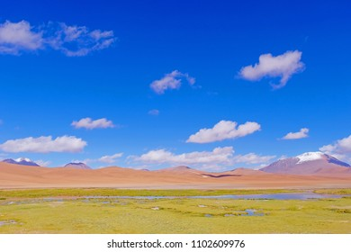 Beautiful landscape with puna grassland, snow-covered mountains and lagoon, near Paso De Jama, Chile, South America