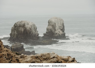Beautiful landscape at Punta de Lobos, Chile