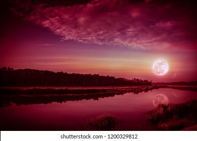 Beautiful landscape of red sky with cloud and full moon above silhouettes of trees at riverside. Serenity nature background, outdoor at nighttime. The moon taken with my camera.