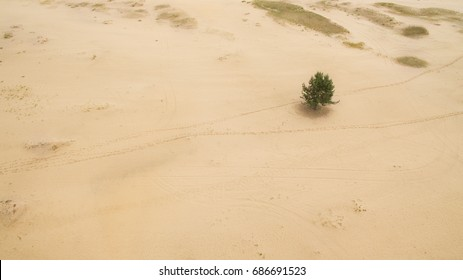 Beautiful landscape of sandy desert aerial photography