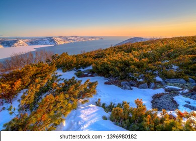 Beautiful landscape of the sea coast with hills, cape and bay. Siberian dwarf pine and snow on the hillside. Evening light at sunset. Nagaev Bay, Sea of ​​Okhotsk, Magadan Region, Far East of Russia.