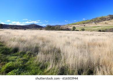 Beautiful Landscape in South Australia
