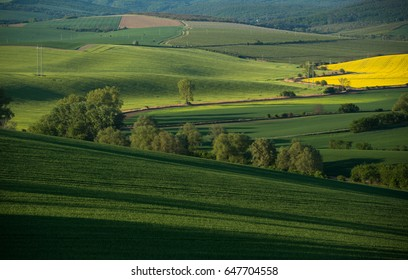 Beautiful landscape of South Moravia