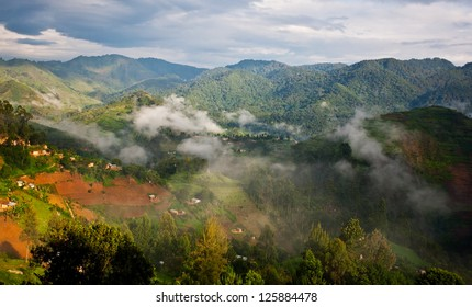 Beautiful landscape in southwestern Uganda, at the Bwindi Impenetrable Forest National Park. The Bwindi National Park is a UNESCO-designated World Heritage Site, home of the mountain gorillas.