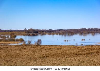 Beautiful Landscape in springtime around the Lake Hornborga, in the middle of Sweden, near Skara.