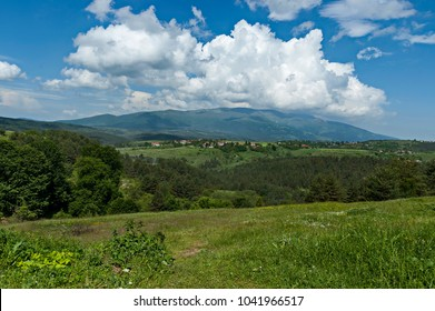 Beautiful landscape of summer nature with green glade and forest in  Plana mountain toward Vitosha mountain, Bulgaria