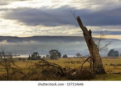 Beautiful landscape in a Tasmanian sunrise, Australia.