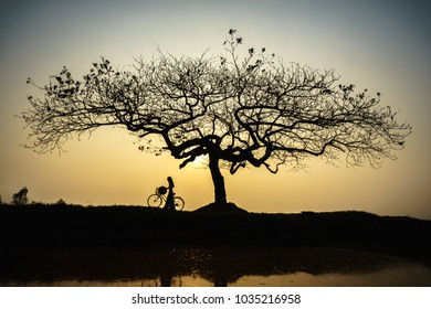Beautiful landscape with trees silhouette at sunset with Vietnamese woman wearing traditional dress Ao Dai standing under the tree