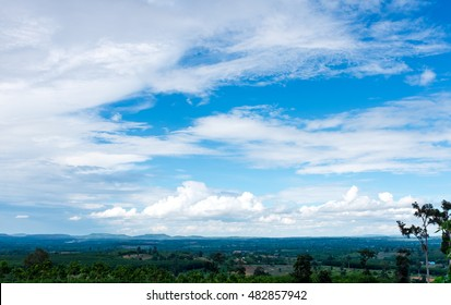 Beautiful landscape with trees and sky. Colorful landscape the summer in the daytime. Pretty nature against beautiful blue sky and cloudy over tranquil nature. Outdoors.