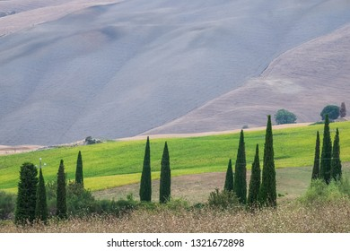 Beautiful landscape in Tuscany at sunny summer day, Italy