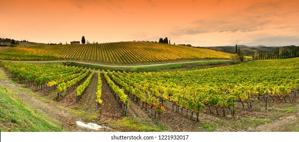 Beautiful landscape with Tuscany vineyards during autumn season in Chianti region near Florence, Italy.