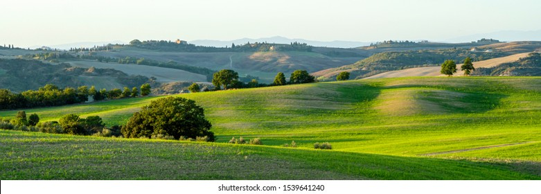 Beautiful landscape in Tuscany - wave hills covered green grass. Tuscany, Italy, Europe. Wide banner.