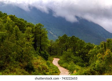 Beautiful Landscape Vietnam Of Road Pass