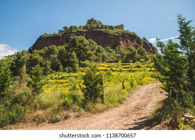 Beautiful landscape view during summer in Catalonia, Spain