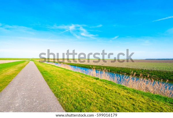 Beautiful landscape view of farmland with pathway and green grass, nice blue sky. Lelystad Netherlands.