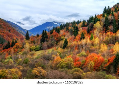 Beautiful landscape view of the mountains of the Rila Nature Park in Bulgaria with vibrant autumn colors in the forest