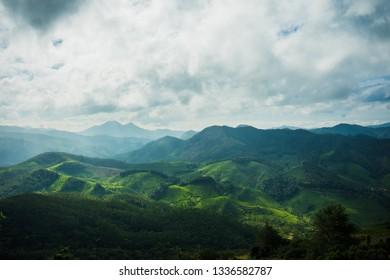 Beautiful landscape view of munnar, kerala, india