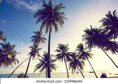 Beautiful landscape view with tropical palm trees on the beach.Asia traveling and vacation concept.