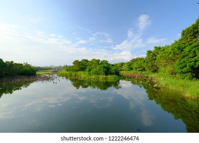 Beautiful landscape view in the wetland park in Hong Kong.