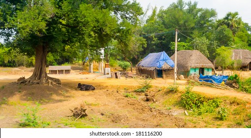 beautiful landscape of the village houses with thatched roof, India, Tamil Nadu, near Thanjavour