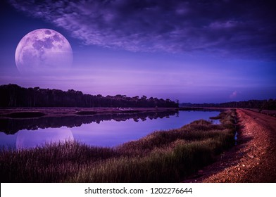 Beautiful landscape of violet sky with cloud and fade half super moon above silhouettes of trees at riverside. Serenity nature background. Early evening outdoor. The moon taken with my camera.